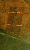 Petite image abstraite, de l'orange et du vert