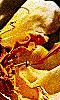 Petite image sur des pétales de rose - Un automne jaune.