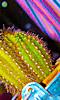 Petite photo de cactus verts