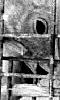 Image abstraite d'un canard en cage