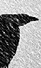 Petit dessin du vol d'un corbeau dans une temp&ecircte de neige