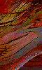 Avatar des couleur de l'écorce d'un arbre