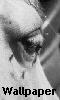 Avatar de l'oeil du cheval - fond d'écran