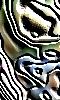 Joli avatar abstrait