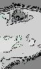 Avatar de l'oeil gris du rat