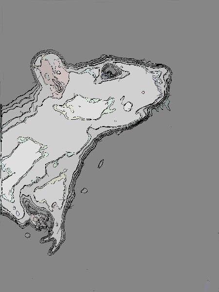 Dessin numérique d'un rat de laboratoire