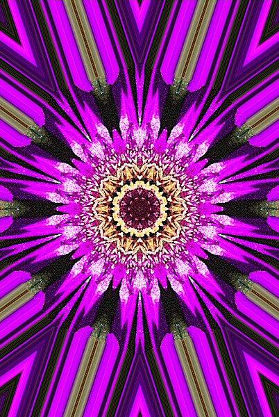Jolie image numérique d'une fleur
