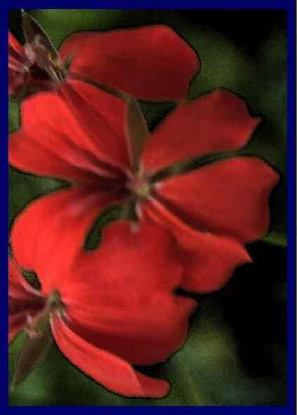 Image numérique d'une fleur rouge.