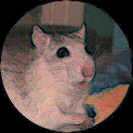 Dessin d'une rate fatiguée et heureuse - ratte - rat