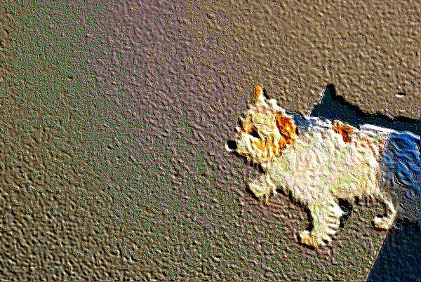 Un petit chien - Une image numérique.