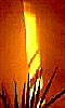 Avatar de la lumière jaune