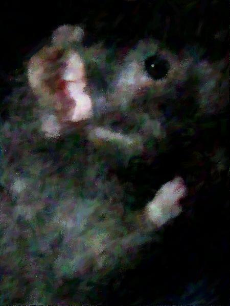 Dessin d 39 un rat noir - Dessin d un rat ...